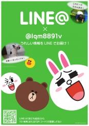 LINE改 1