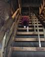 姫路城の階段とめ